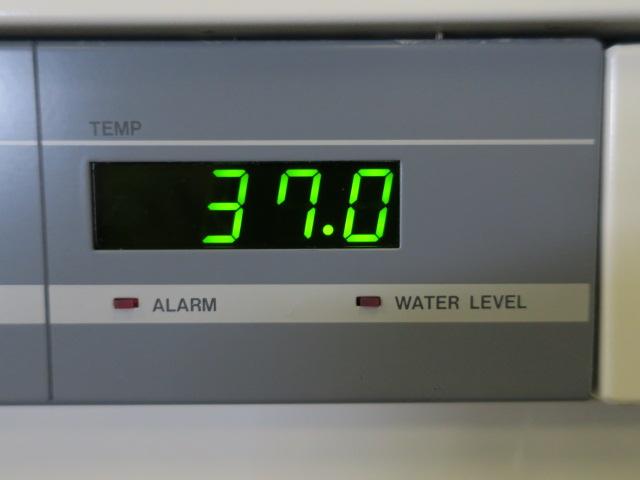 ヤマト科学 恒温槽 IT-42