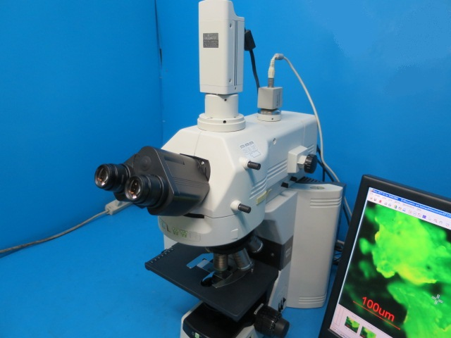 nikon fluorancemicroscope eclipse 80i