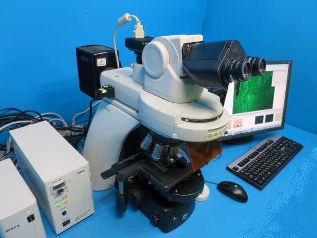 ニコン 生物顕微鏡 エクリプス Ni-U