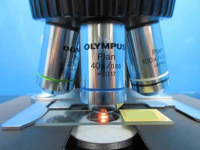 olympus biological microscope BX41TF